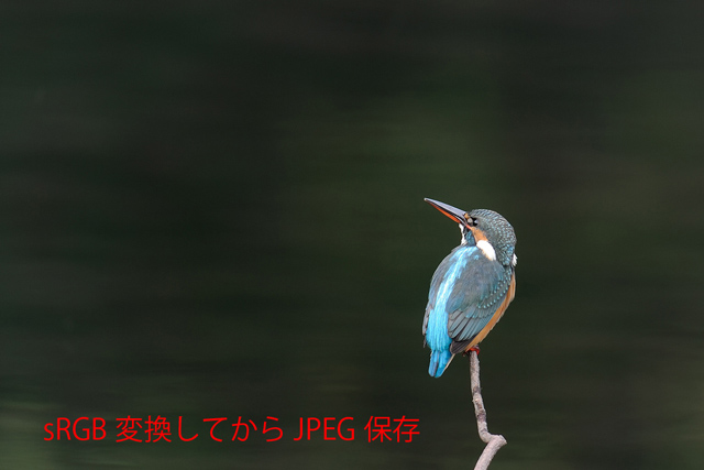 20111204-rgb-srgb-web_.jpg