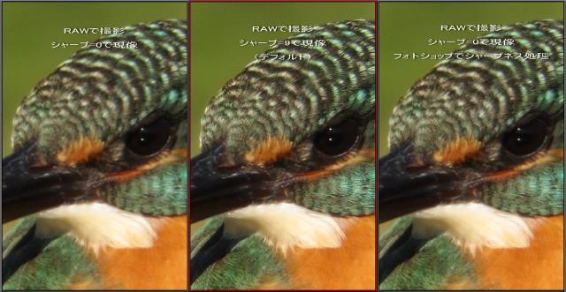 20100129-s90_raw_toubai