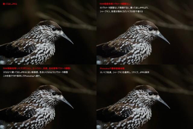 20120414-nikon1-raw-jpeg01